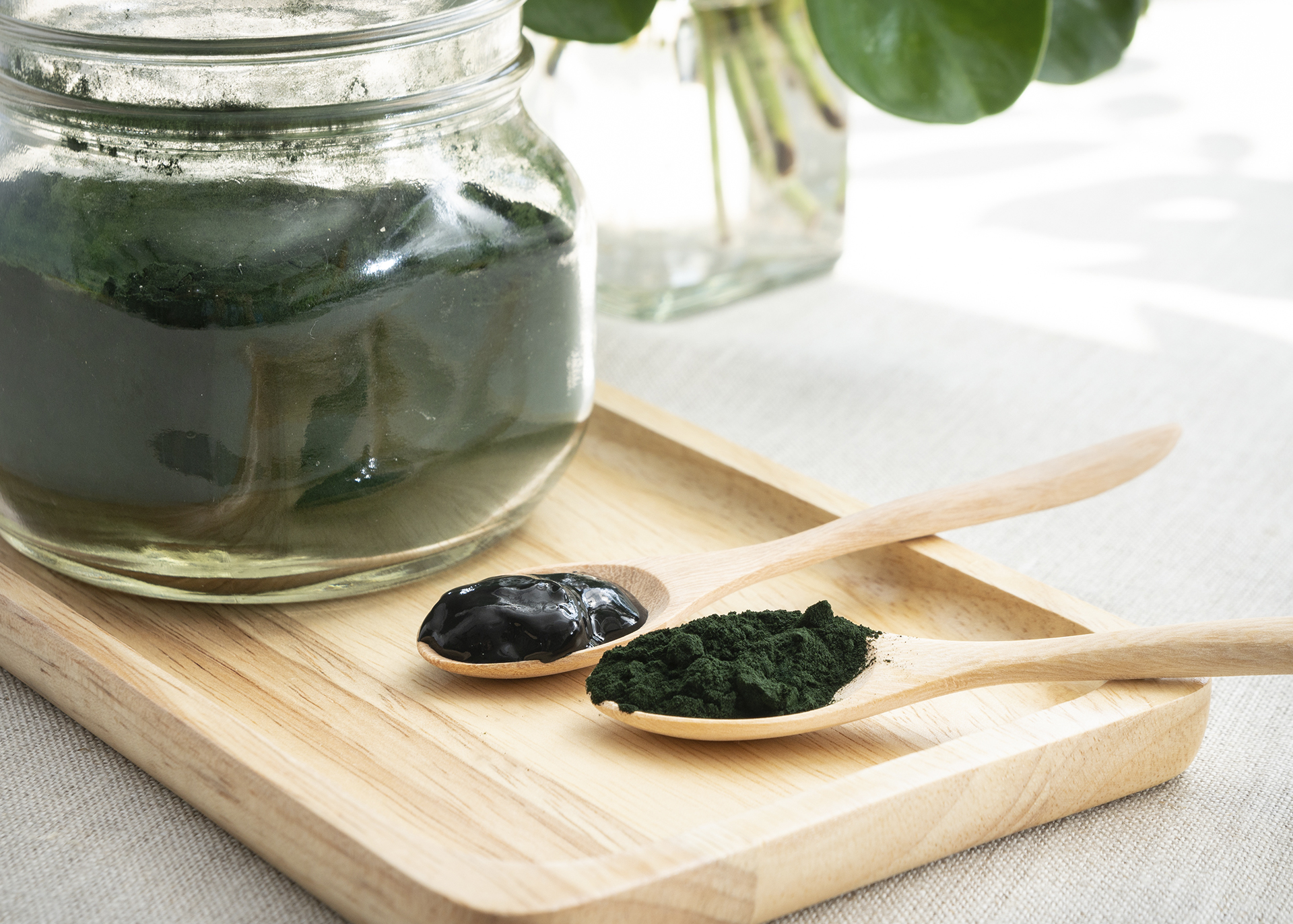 Spirulina_Henry-Lamotte-Oils