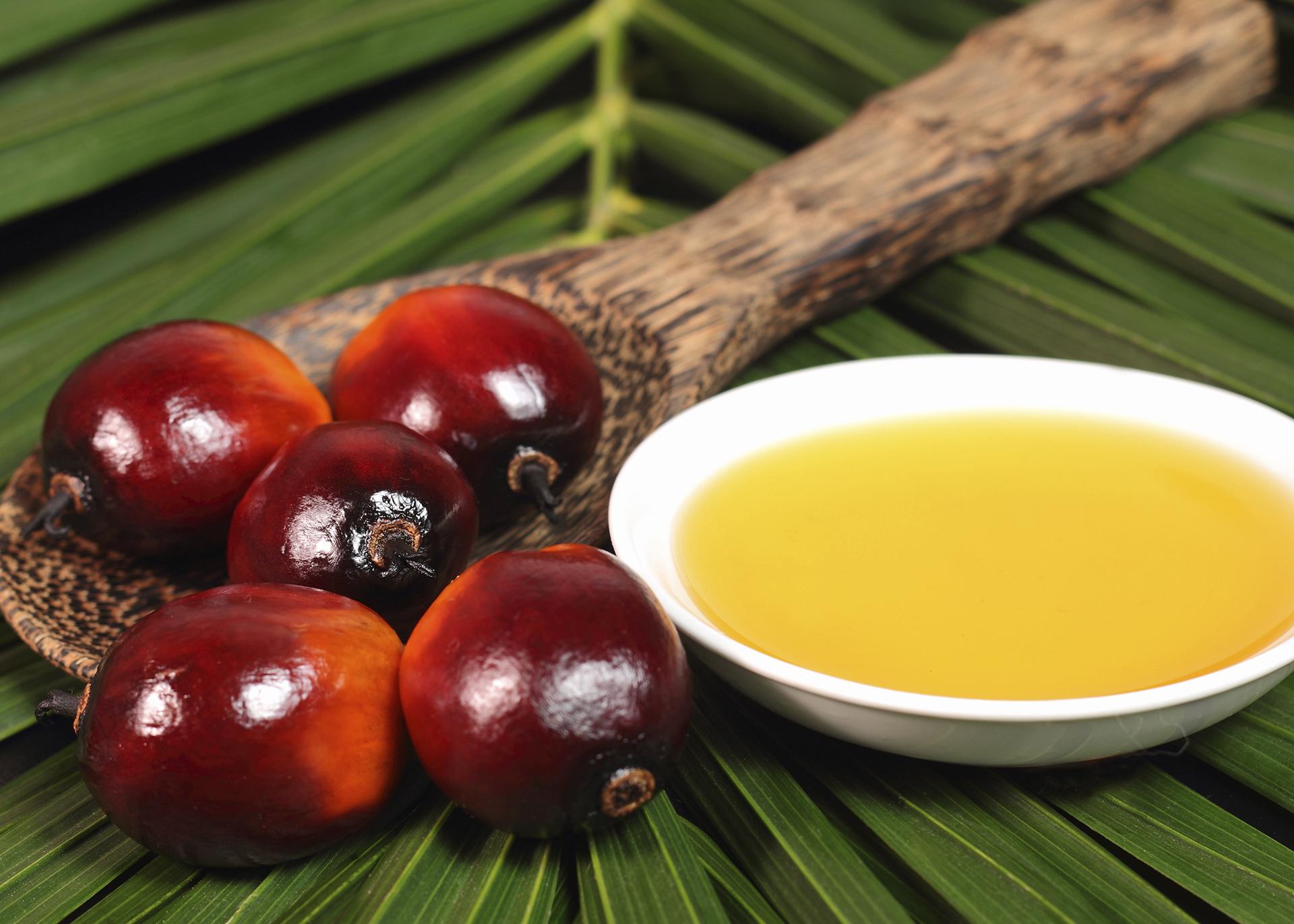 Palm-Oil_Henry-Lamotte-Oils