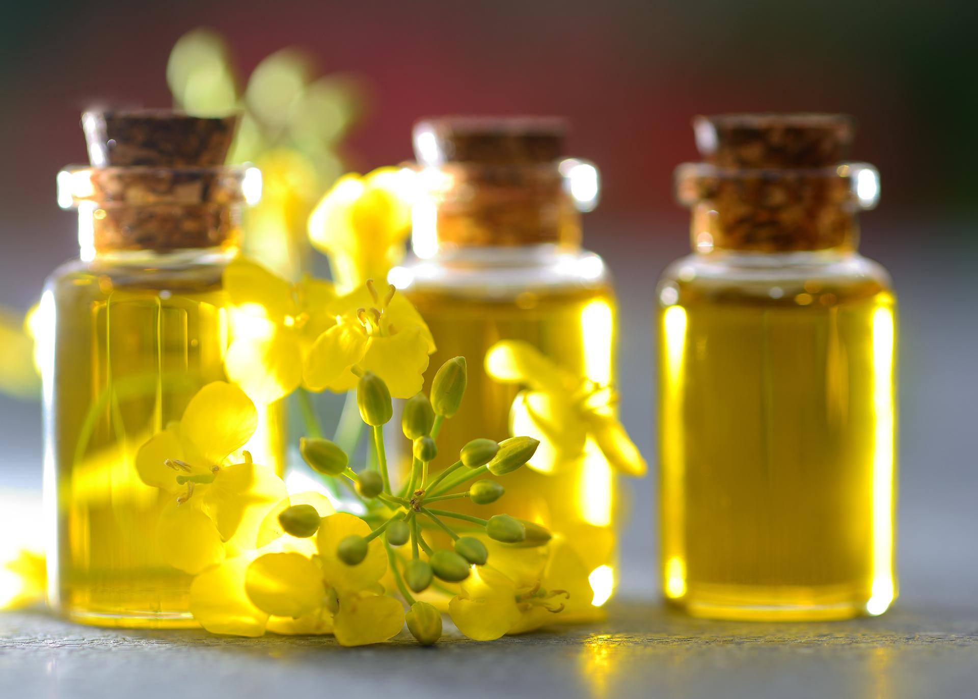 Rapeseed-Oil_Henry-Lamotte-Oils