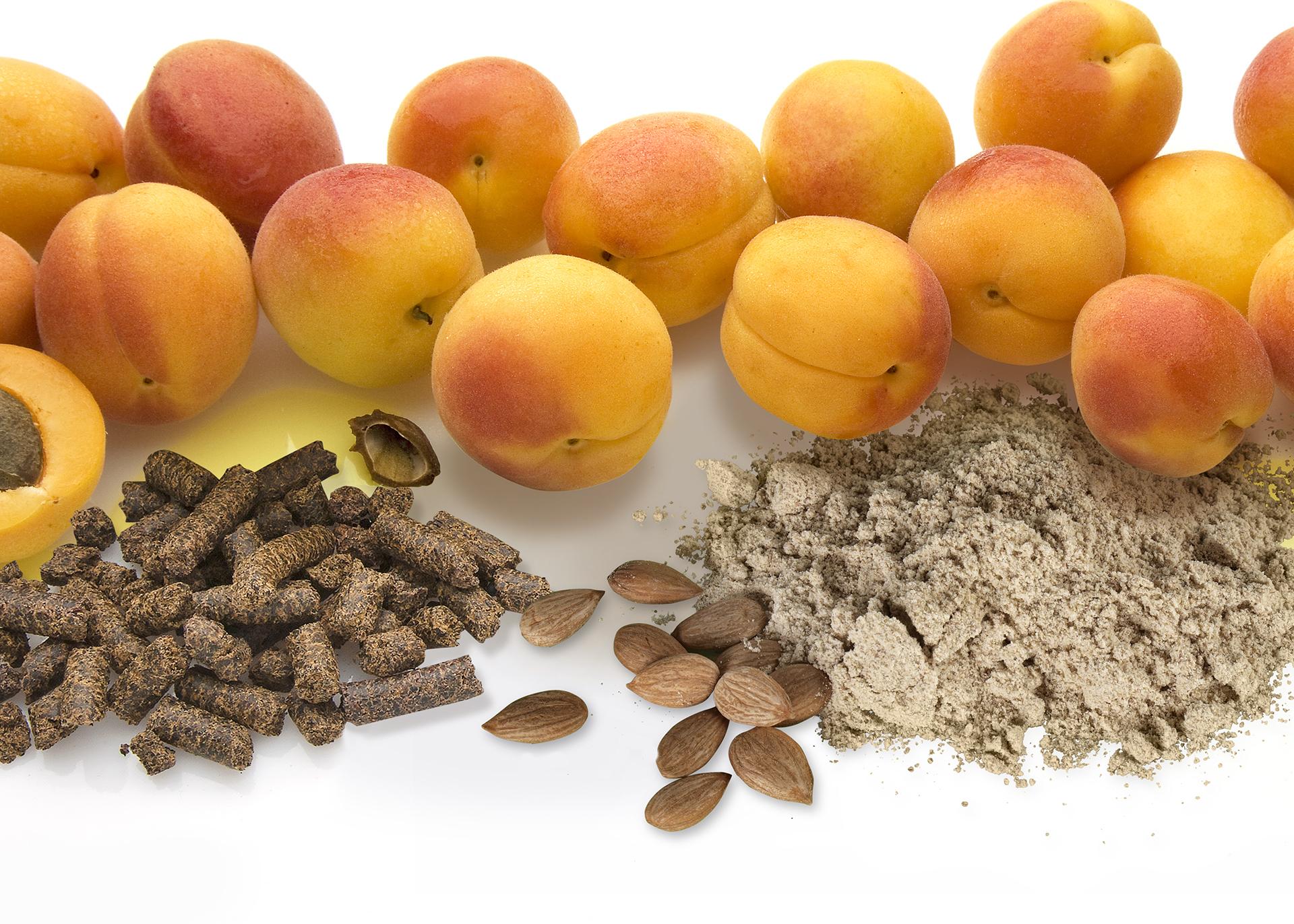 Apricot-Kernel-Press-Cake_Apricot-Kernel-Flour_Henry-Lamotte-Oils