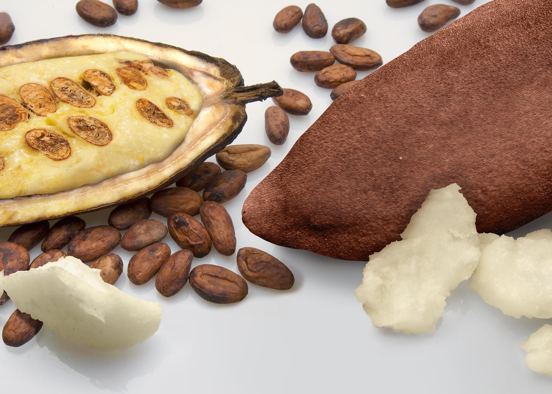 Cupuacu-Butter_Henry-Lamotte-Oils