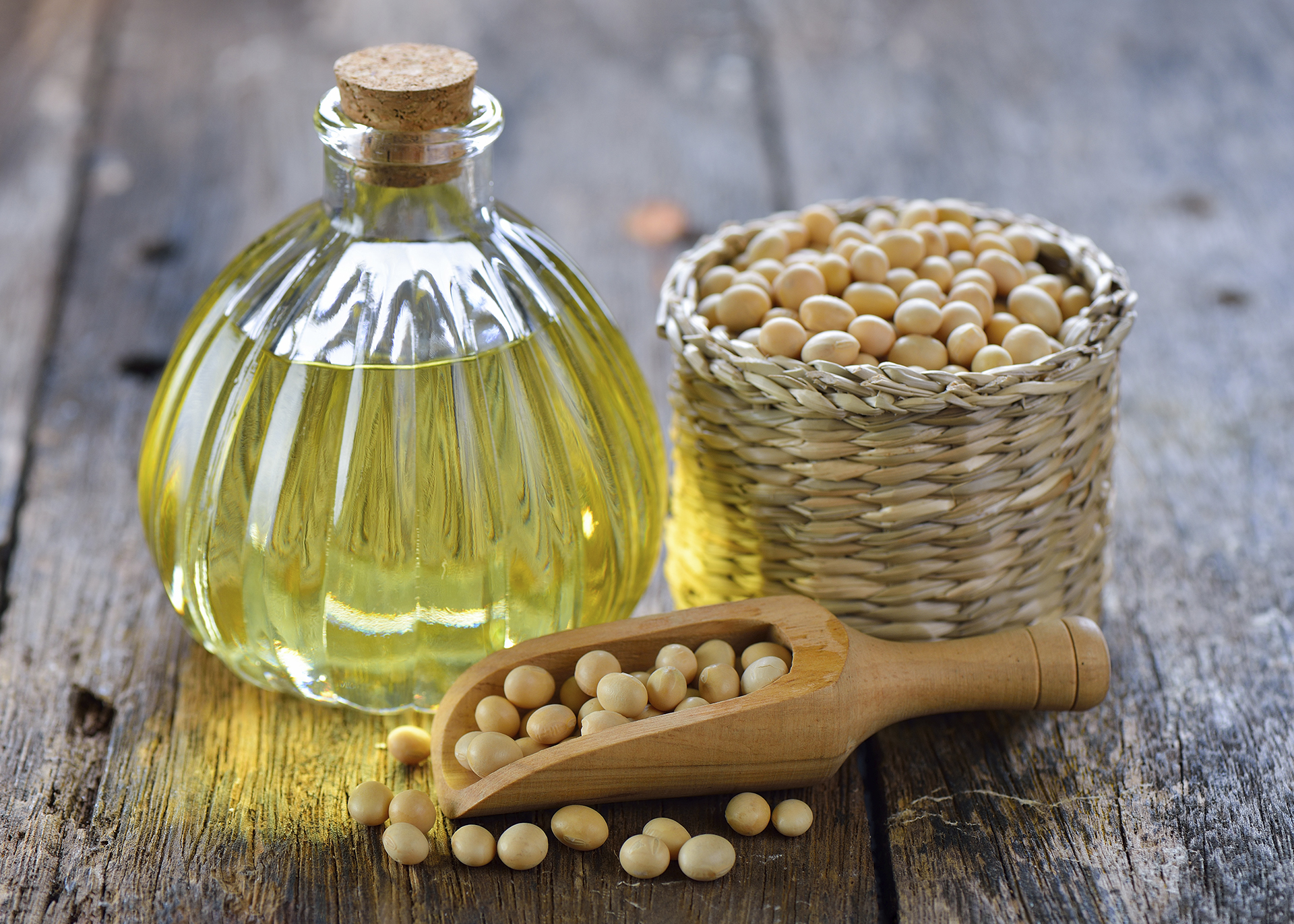 Soybean-Oil_Henry-Lamotte-Oils