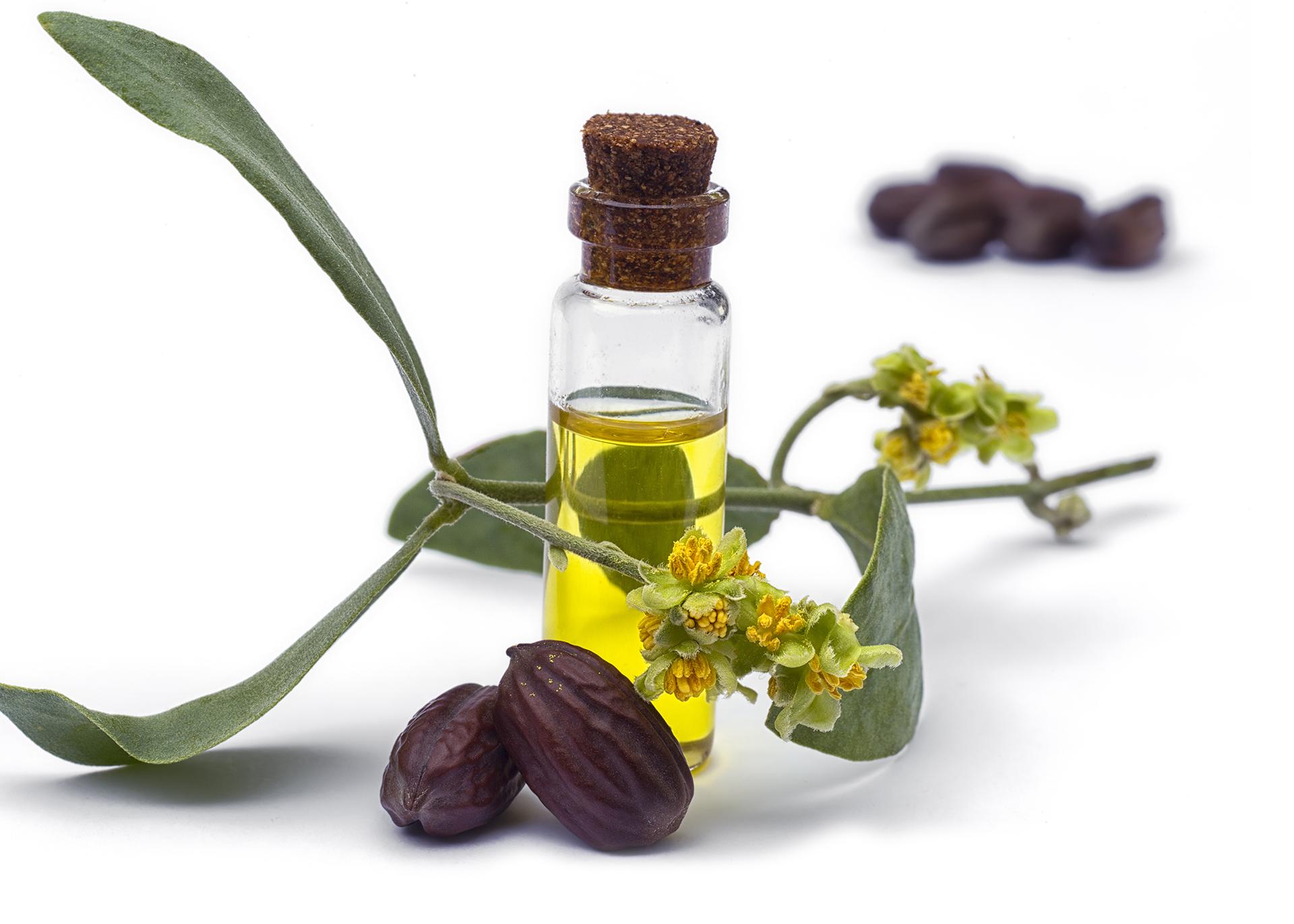 Jojoba-Oil_Henry-Lamotte-Oils
