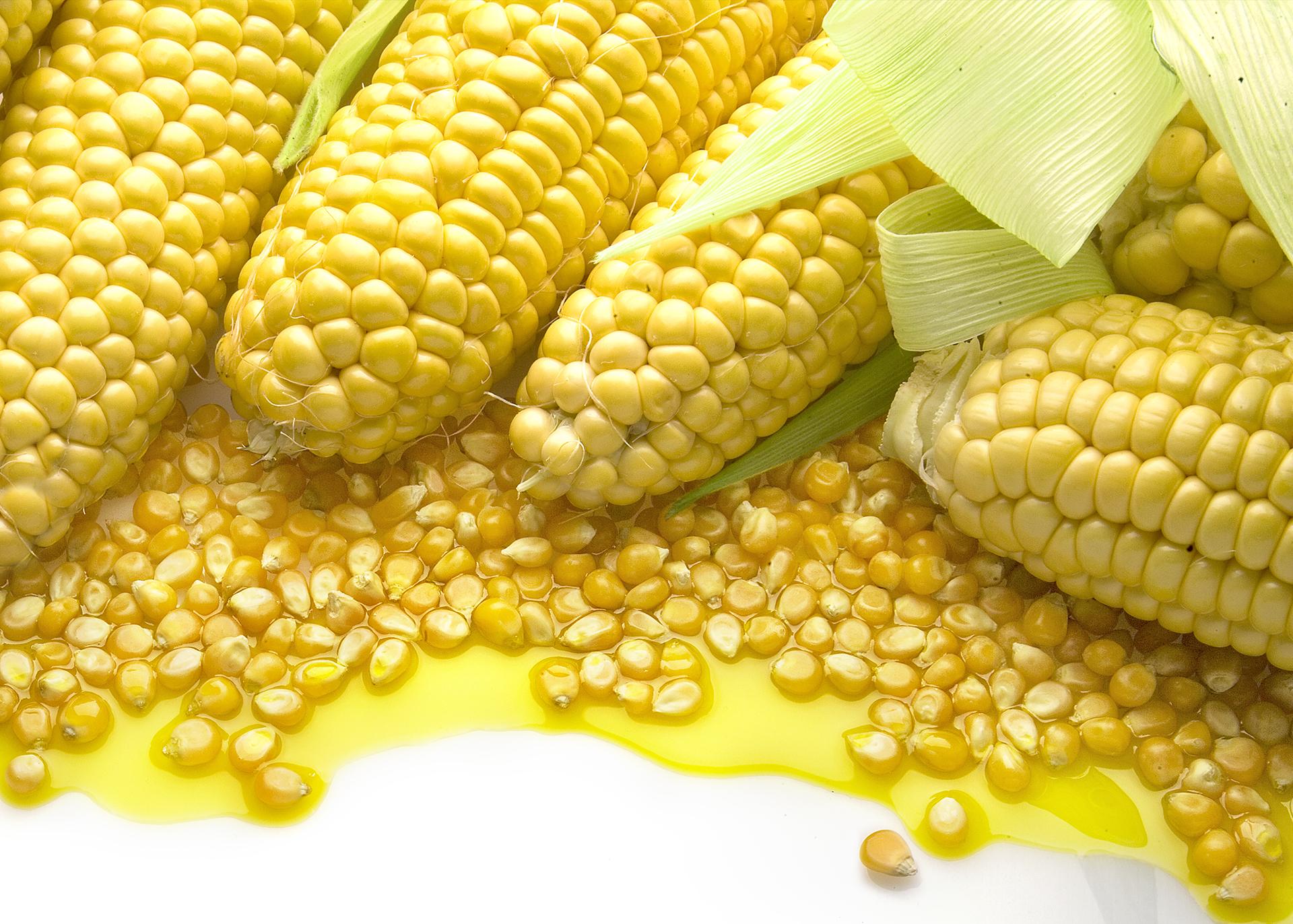 Corn-Oil_Henry-Lamotte-Oils