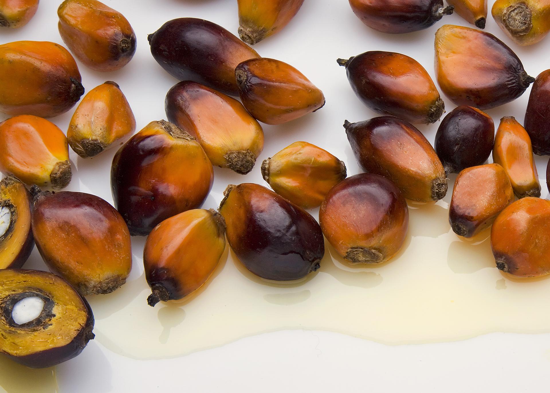 Palmolein_Henry-Lamotte-Oils