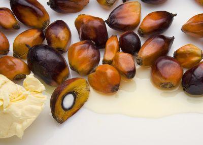 Palmkernöl